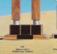 beach series trophy